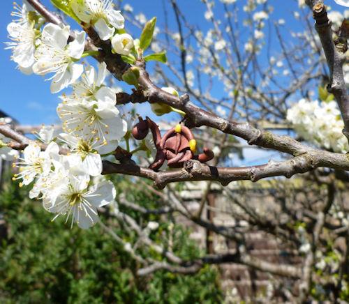 Mini Khennik Blossom