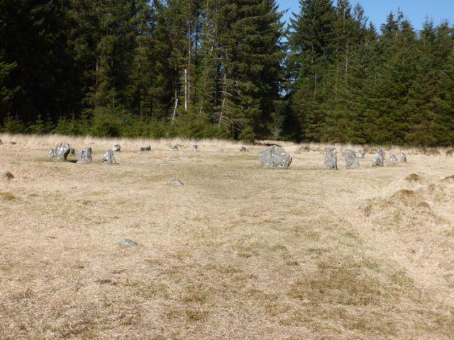 Stones Fernworthy 1