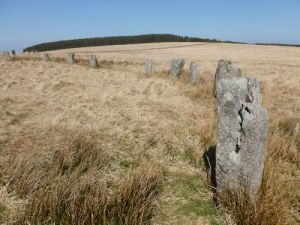Stones Grey Wethers 7